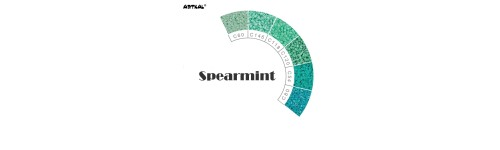 Mini-C Spearmint Scale