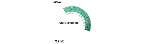 Midi-S Spearmint Scale